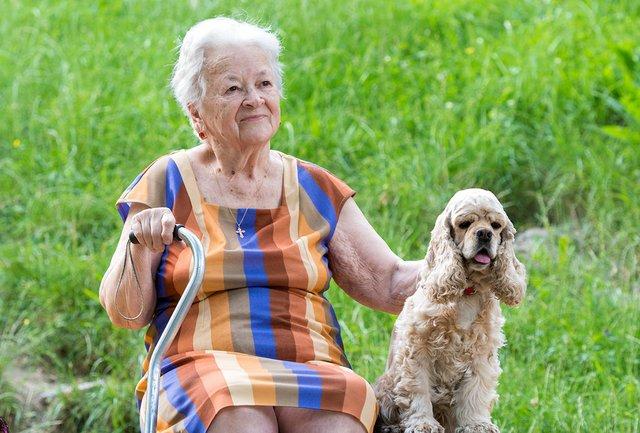 Senior & Pet