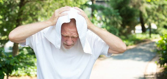 Heat Stress in the Elderly